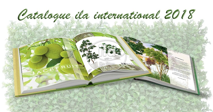 Catalogo ila international 2018