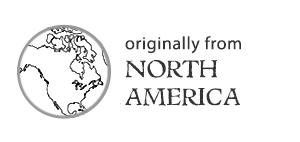Originally from North America